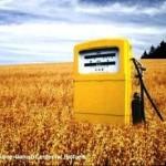UN Calls for Halt to U.S. Ethanol Fuel Policy
