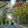 Delayed Fall Foliage Season Arrives with Promise of Color